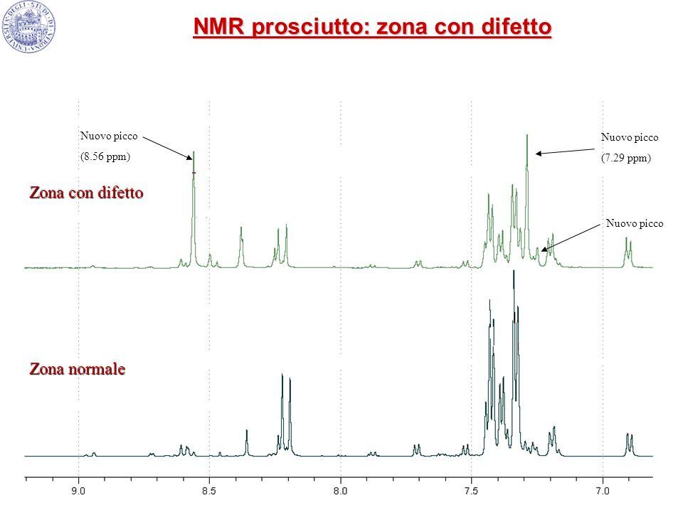 Zona normale Zona con difetto Nuovo picco (7.29 ppm) Nuovo picco (8.56 ppm) NMR prosciutto: zona con difetto