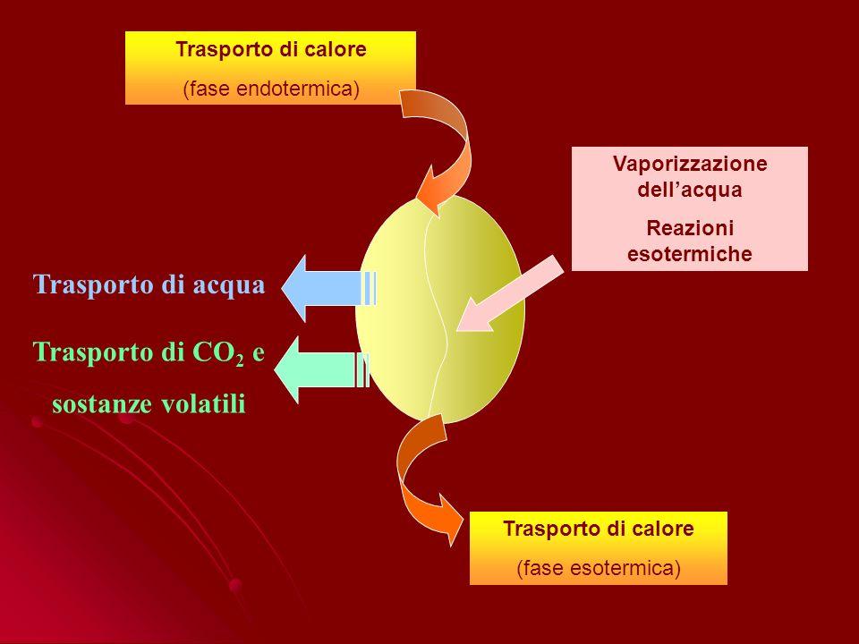 Trasporto di calore (fase endotermica) Trasporto di acqua Trasporto di calore (fase esotermica) Trasporto di CO 2 e sostanze volatili Vaporizzazione dellacqua Reazioni esotermiche