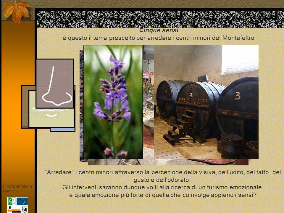 CERAMICHE Programmazione Leader + Con particolare riferimento allantica Casteldurante, la ceramica si presta bene allesperienza sensoriale, il tatto in primo luogo, ma anche la vista Usata correntemente come materiale per insegne