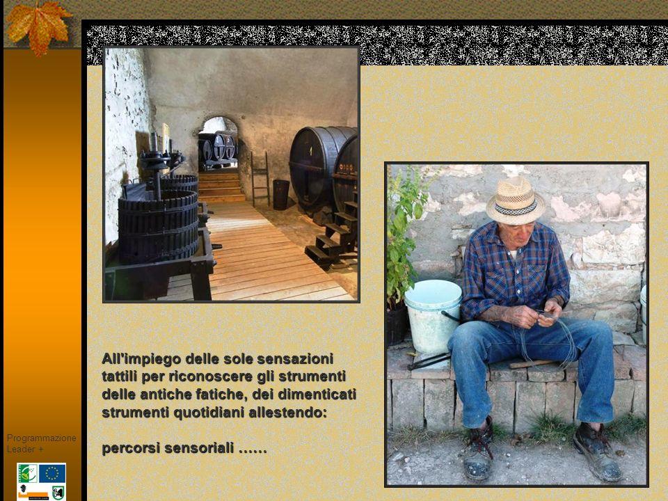 UNA SCUOLA D ARTE NEL MONTEFELTRO Il T.A.M., con la sua mostra permanente ricca di molte opere, offre, nella piacevole cornice del borgo.