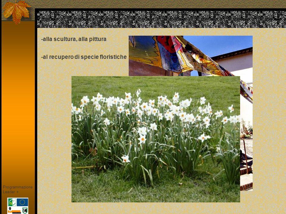 MURALES; forma d arte, antica quanto luomo Programmazione Leader + Saludecio, in cui questa tradizione è nata nel 1991 in occasione della IX edizione di 800 Festival.