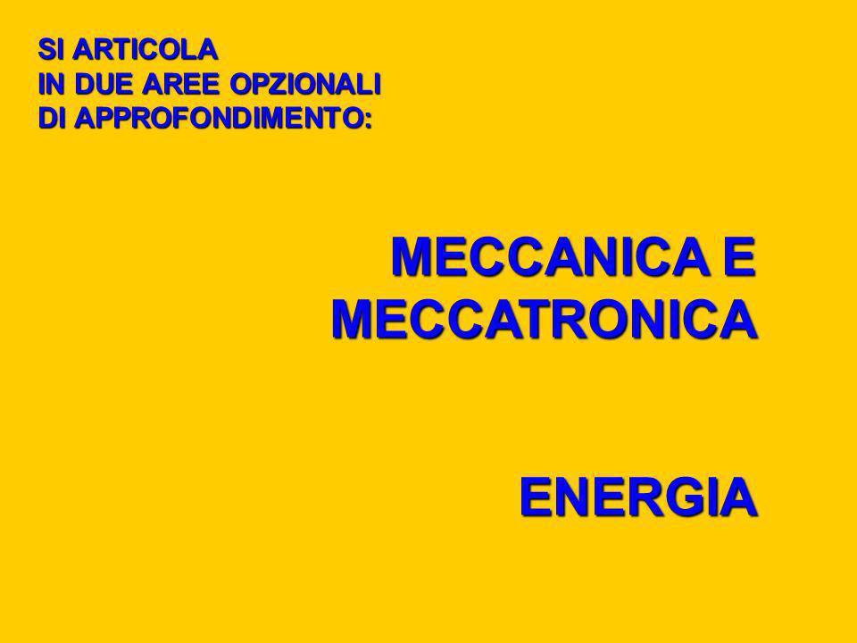 SI ARTICOLA IN DUE AREE OPZIONALI DI APPROFONDIMENTO: MECCANICA E MECCATRONICA ENERGIA