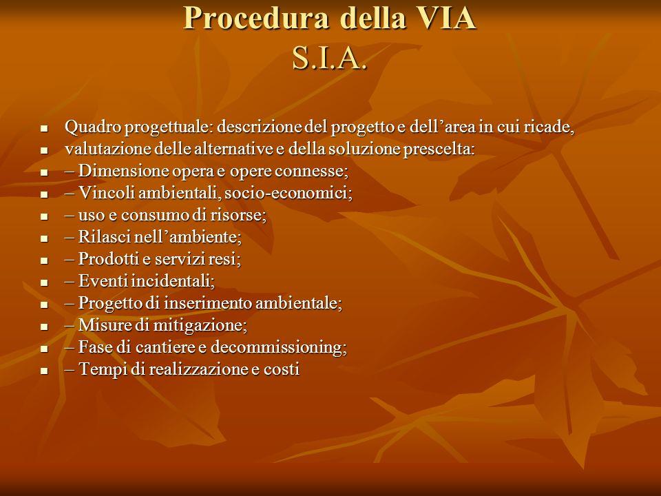 Procedura della VIA S.I.A. Quadro progettuale: descrizione del progetto e dellarea in cui ricade, Quadro progettuale: descrizione del progetto e della