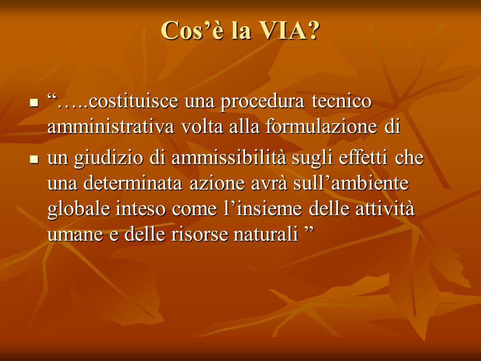 Cosè la VIA? …..costituisce una procedura tecnico amministrativa volta alla formulazione di …..costituisce una procedura tecnico amministrativa volta