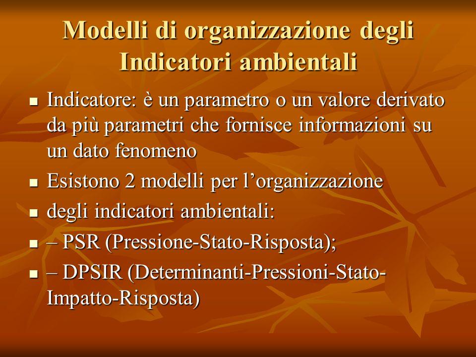 Modelli di organizzazione degli Indicatori ambientali Indicatore: è un parametro o un valore derivato da più parametri che fornisce informazioni su un