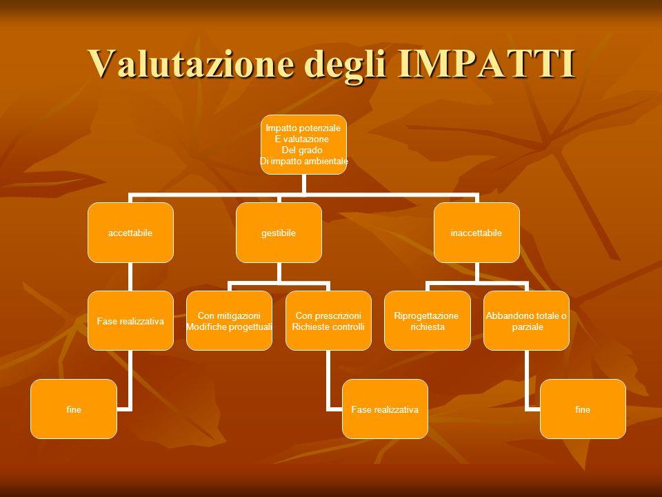 Valutazione degli IMPATTI Impatto potenziale E valutazione Del grado Di impatto ambientale accettabile Fase realizzativa fine gestibile Con mitigazion