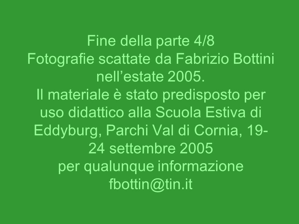 Fine della parte 4/8 Fotografie scattate da Fabrizio Bottini nellestate 2005. Il materiale è stato predisposto per uso didattico alla Scuola Estiva di