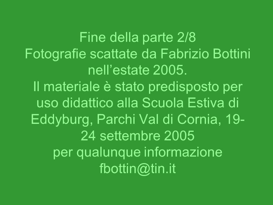 Fine della parte 2/8 Fotografie scattate da Fabrizio Bottini nellestate 2005. Il materiale è stato predisposto per uso didattico alla Scuola Estiva di