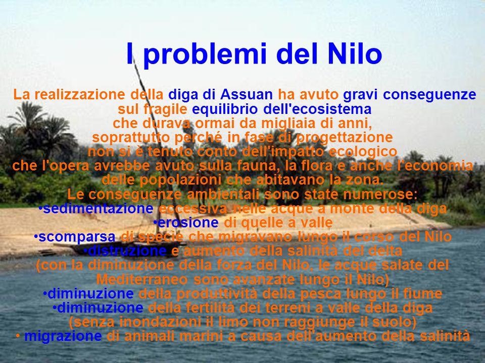 I problemi del Nilo La realizzazione della diga di Assuan ha avuto gravi conseguenze sul fragile equilibrio dell'ecosistema che durava ormai da miglia