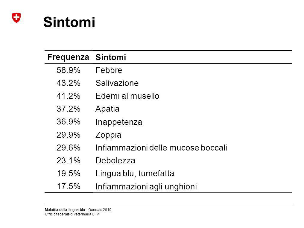 Malattia della lingua blu | Gennaio 2010 Ufficio federale di veterinaria UFV Sintomi Febbre Salivazione Edemi al musello Apatia Inappetenza Zoppia Inf