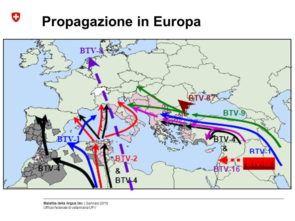 Malattia della lingua blu | Gennaio 2010 Ufficio federale di veterinaria UFV Propagazione in Europa