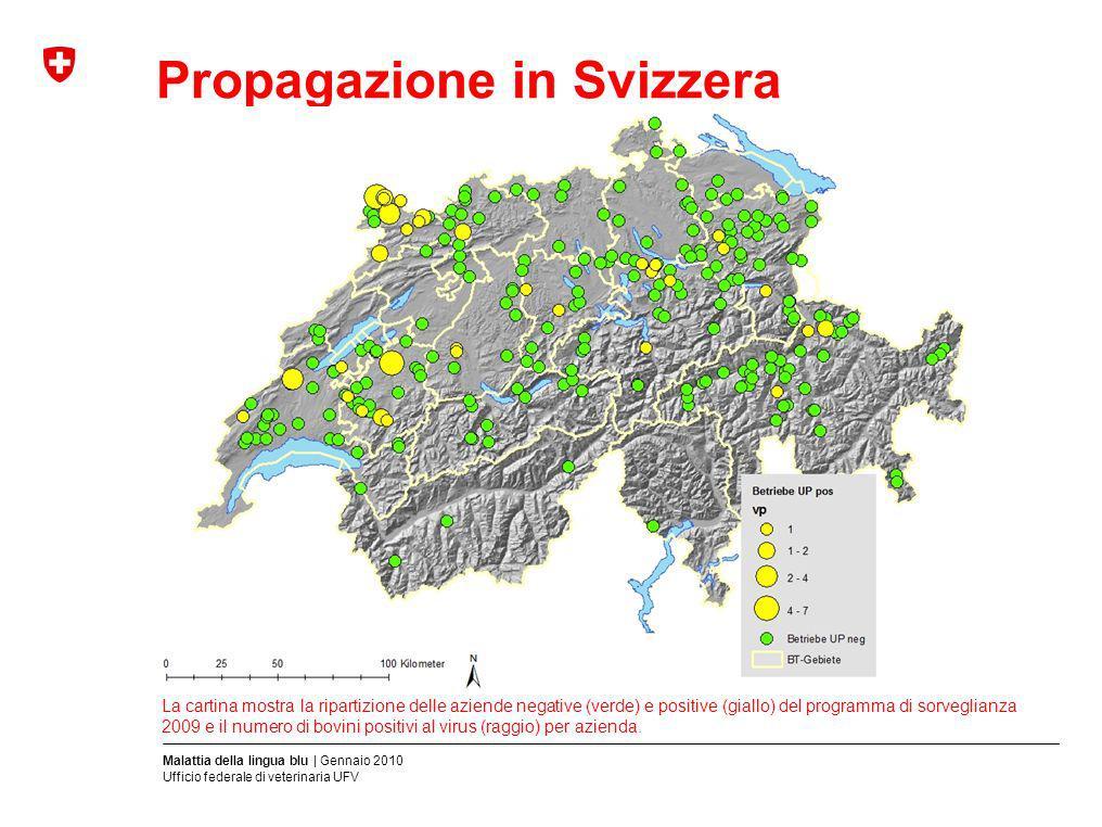 Malattia della lingua blu | Gennaio 2010 Ufficio federale di veterinaria UFV Propagazione in Svizzera La cartina mostra la ripartizione delle aziende