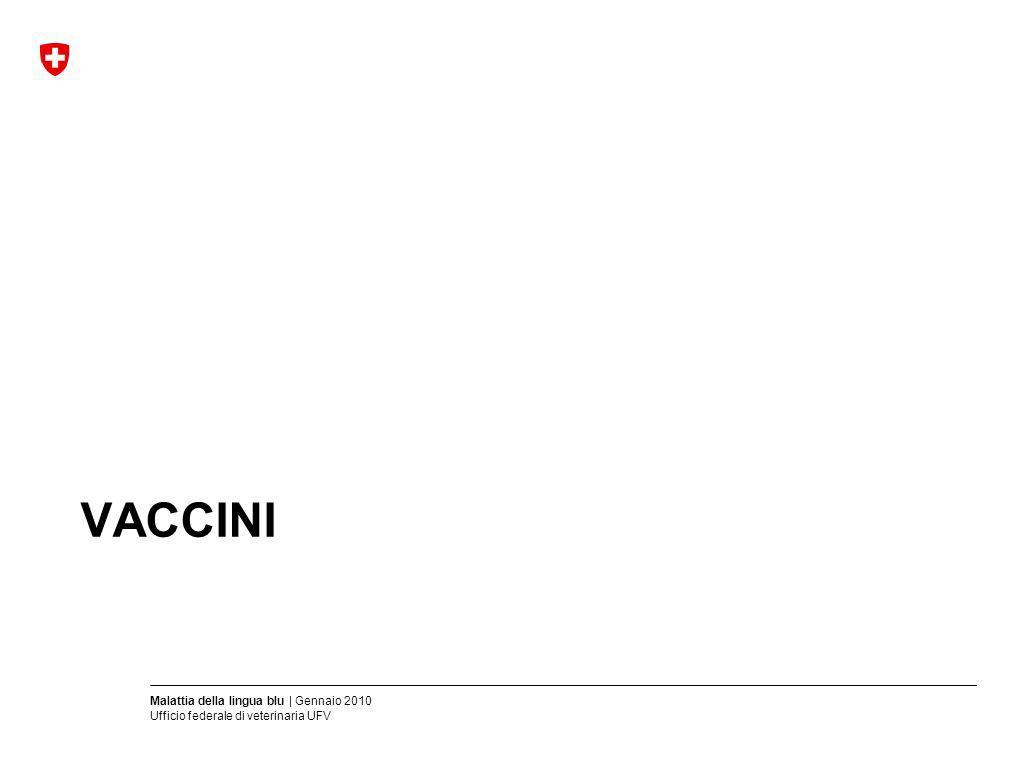 Malattia della lingua blu | Gennaio 2010 Ufficio federale di veterinaria UFV VACCINI