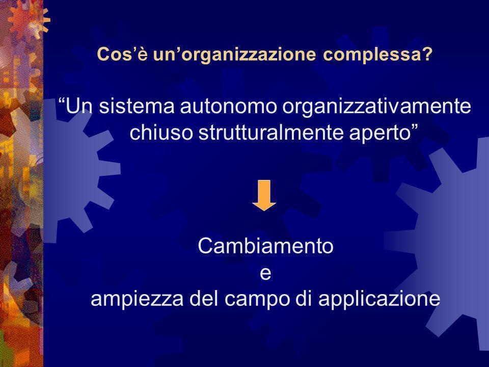 Cos è unorganizzazione complessa.