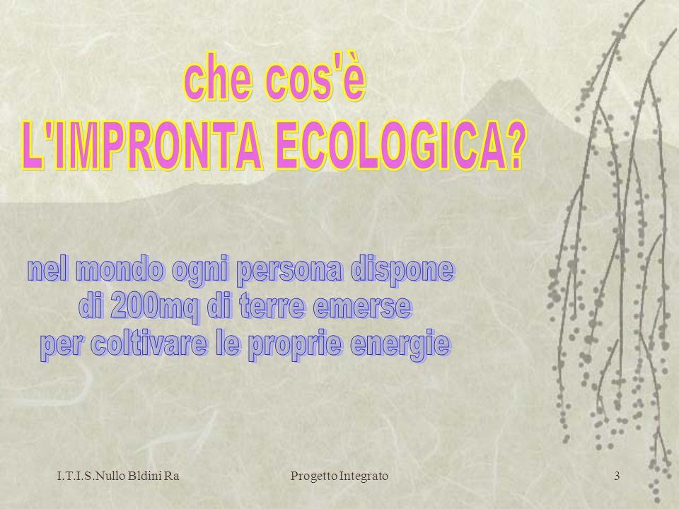I.T.I.S.Nullo Bldini RaProgetto Integrato4