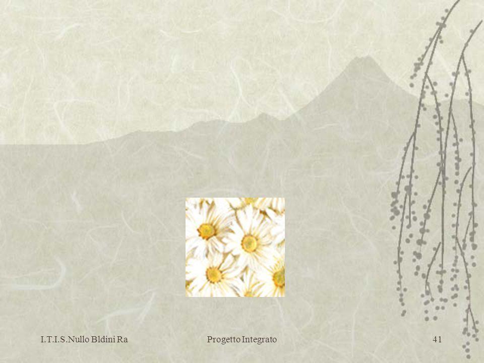 I.T.I.S.Nullo Bldini RaProgetto Integrato41
