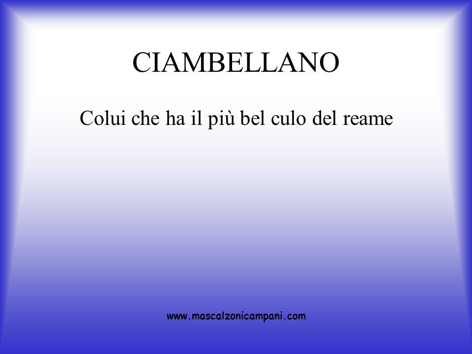 CIAMBELLANO Colui che ha il più bel culo del reame www.mascalzonicampani.com