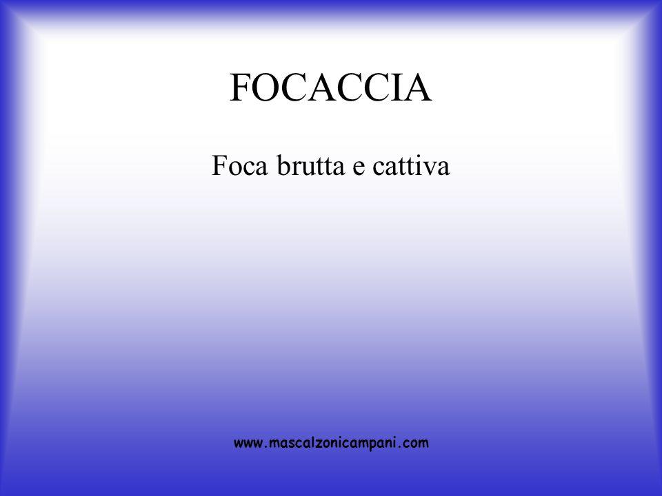 FOCACCIA Foca brutta e cattiva www.mascalzonicampani.com
