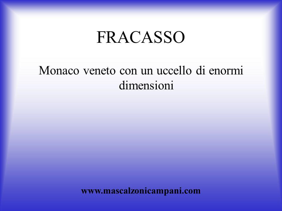 FRACASSO Monaco veneto con un uccello di enormi dimensioni www.mascalzonicampani.com