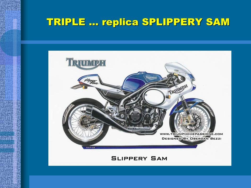 TRIDENT SLIPPERY SAM