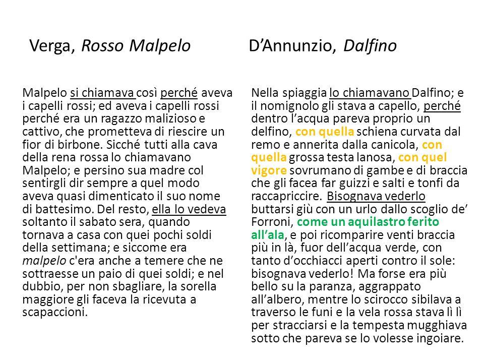 Verga, Rosso Malpelo DAnnunzio, Dalfino Malpelo si chiamava così perché aveva i capelli rossi; ed aveva i capelli rossi perché era un ragazzo malizios