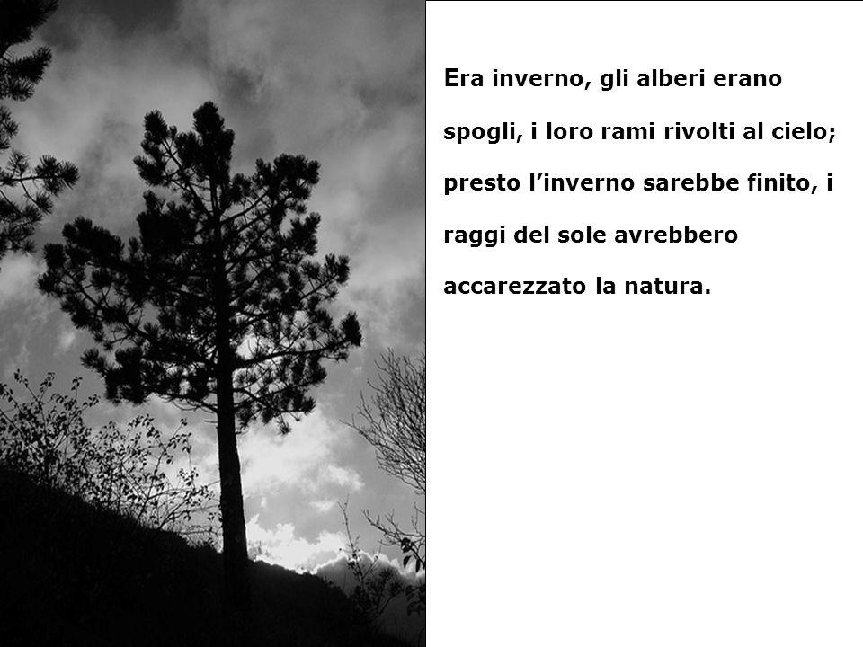 E ra inverno, gli alberi erano spogli, i loro rami rivolti al cielo; presto linverno sarebbe finito, i raggi del sole avrebbero accarezzato la natura.