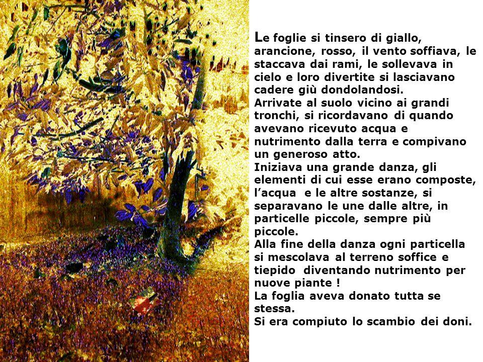 L e foglie si tinsero di giallo, arancione, rosso, il vento soffiava, le staccava dai rami, le sollevava in cielo e loro divertite si lasciavano cader