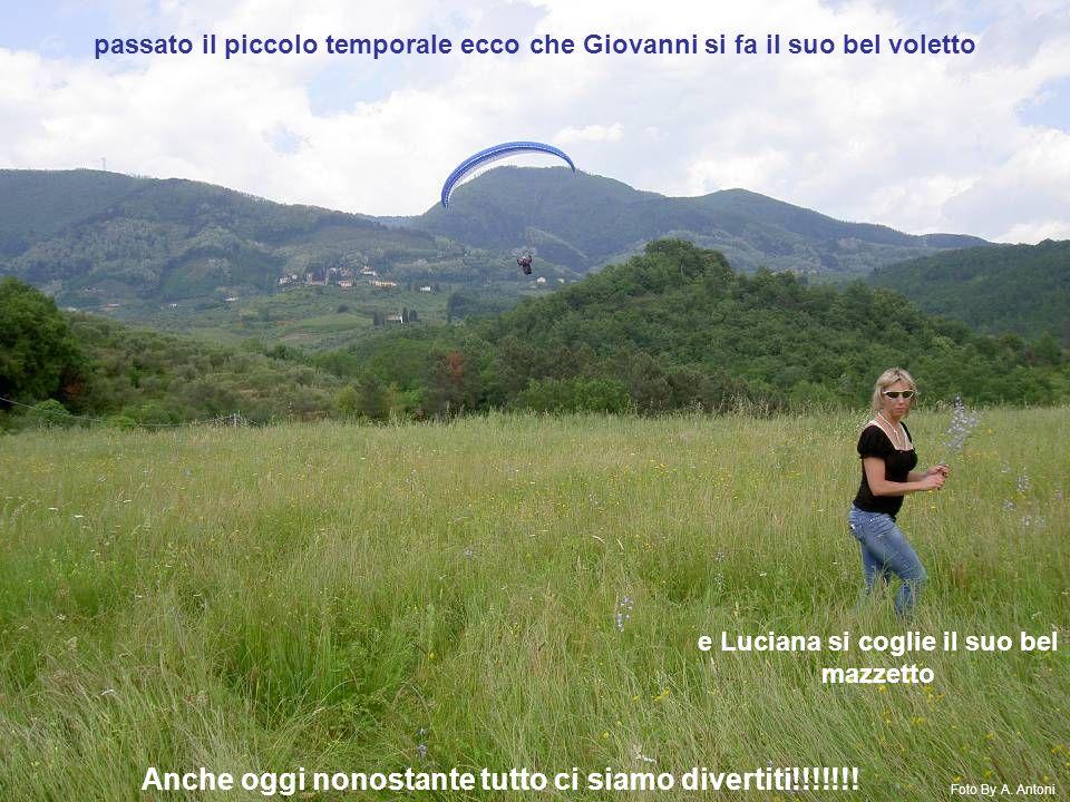 passato il piccolo temporale ecco che Giovanni si fa il suo bel voletto e Luciana si coglie il suo bel mazzetto Foto By A.