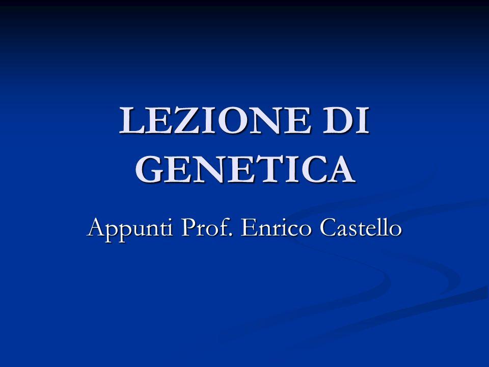 LEZIONE DI GENETICA Appunti Prof. Enrico Castello