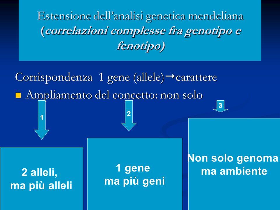 Estensione dellanalisi genetica mendeliana (correlazioni complesse fra genotipo e fenotipo) Corrispondenza 1 gene (allele) carattere Ampliamento del c