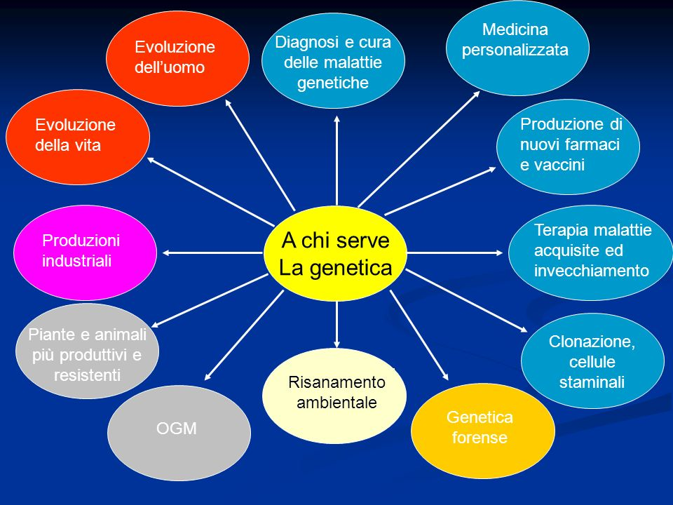 A chi serve La genetica Terapia malattie acquisite ed invecchiamento Produzione di nuovi farmaci e vaccini Medicina personalizzata Diagnosi e cura del