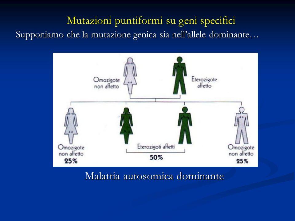 Mutazioni puntiformi su geni specifici Supponiamo che la mutazione genica sia nellallele dominante… Malattia autosomica dominante aA aA aa aA