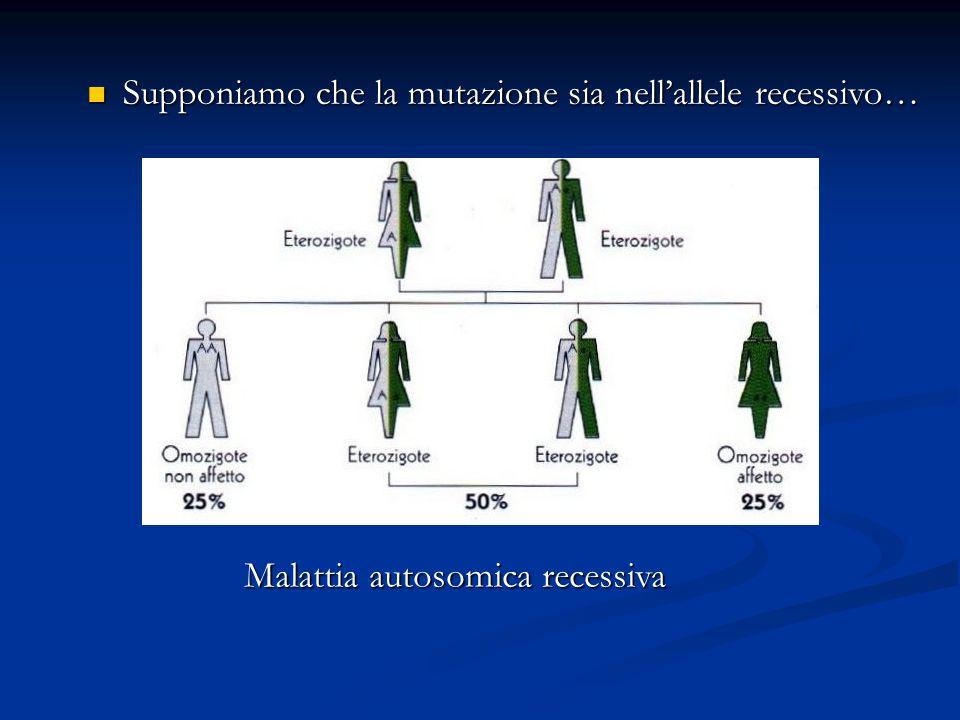 Supponiamo che la mutazione sia nellallele recessivo… Supponiamo che la mutazione sia nellallele recessivo… Malattia autosomica recessiva aA aA aA aA