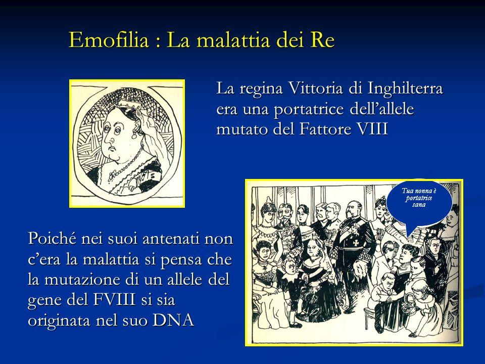 Emofilia : La malattia dei Re La regina Vittoria di Inghilterra era una portatrice dellallele mutato del Fattore VIII Poiché nei suoi antenati non cer