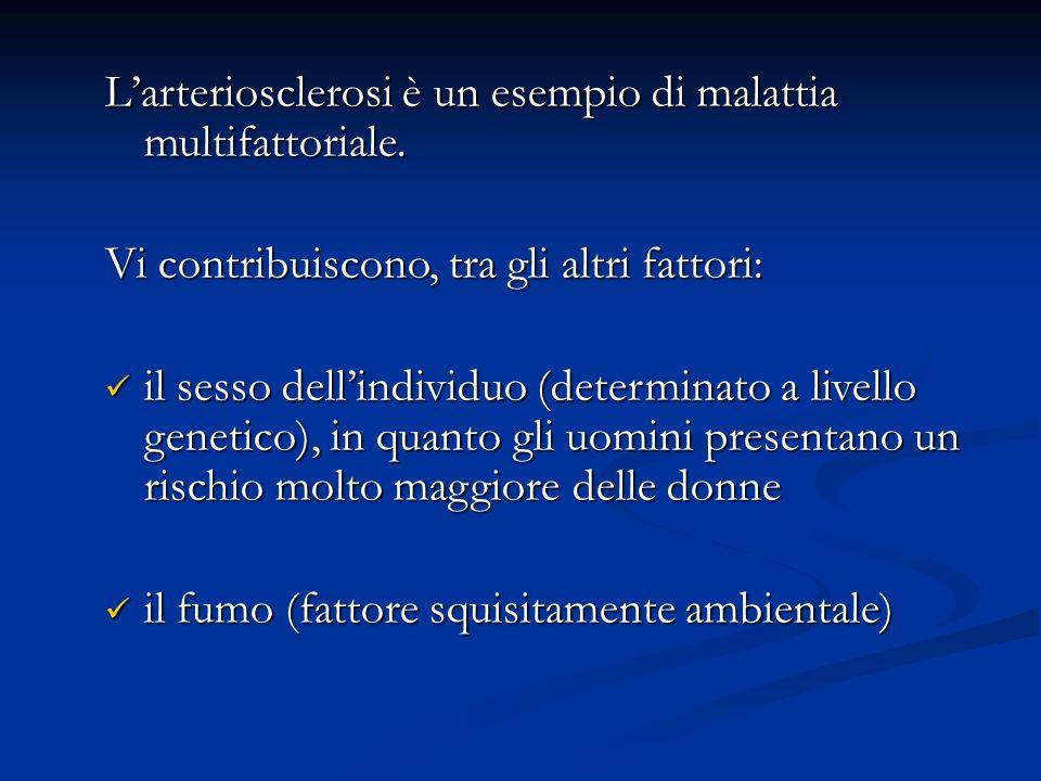 Larteriosclerosi è un esempio di malattia multifattoriale. Vi contribuiscono, tra gli altri fattori: il sesso dellindividuo (determinato a livello gen