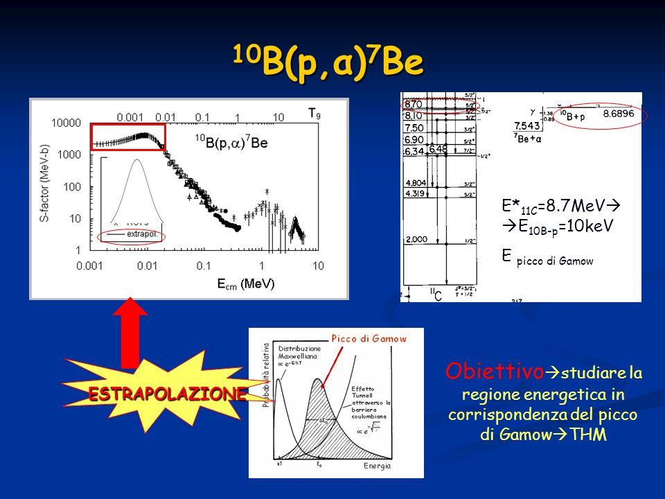10 B(p,α) 7 Be E* 11C =8.7MeV E 10B-p =10keV E picco di Gamow ESTRAPOLAZIONE Obiettivo studiare la regione energetica in corrispondenza del picco di G