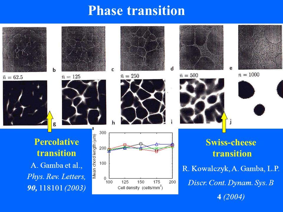 Phase transition Percolative transition A.Gamba et al., Phys.