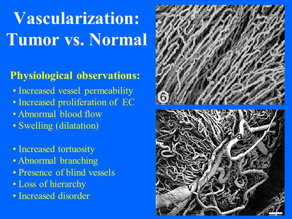 Vascularization: Tumor vs.