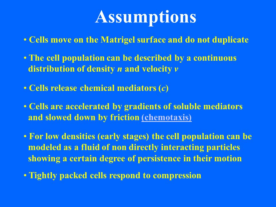 Assumptions Cells are accelerated by gradients of soluble mediators and slowed down by friction (chemotaxis)(chemotaxis) Cells move on the Matrigel surface and do not duplicate The cell population can be described by a continuous distribution of density n and velocity v Cells release chemical mediators (c) For low densities (early stages) the cell population can be modeled as a fluid of non directly interacting particles showing a certain degree of persistence in their motion Tightly packed cells respond to compression