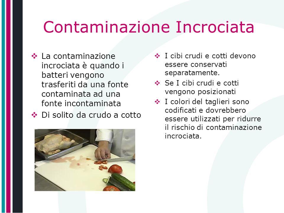 Contaminazione Incrociata La contaminazione incrociata è quando i batteri vengono trasferiti da una fonte contaminata ad una fonte incontaminata Di so