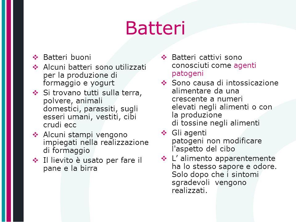 Batteri Batteri buoni Alcuni batteri sono utilizzati per la produzione di formaggio e yogurt Si trovano tutti sulla terra, polvere, animali domestici,