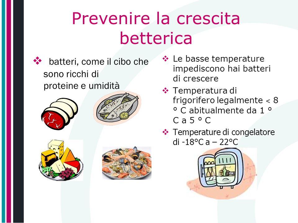 Prevenire la crescita betterica batteri, come il cibo che sono ricchi di proteine e umidità Le basse temperature impediscono hai batteri di crescere T