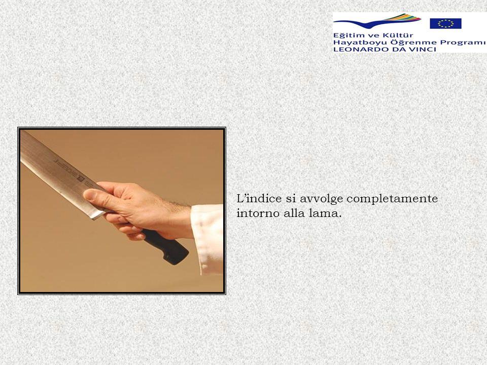 Afferrare lalimento con la mano libera e mantenere la punta delle dita nascoste per motivi di sicurezza.