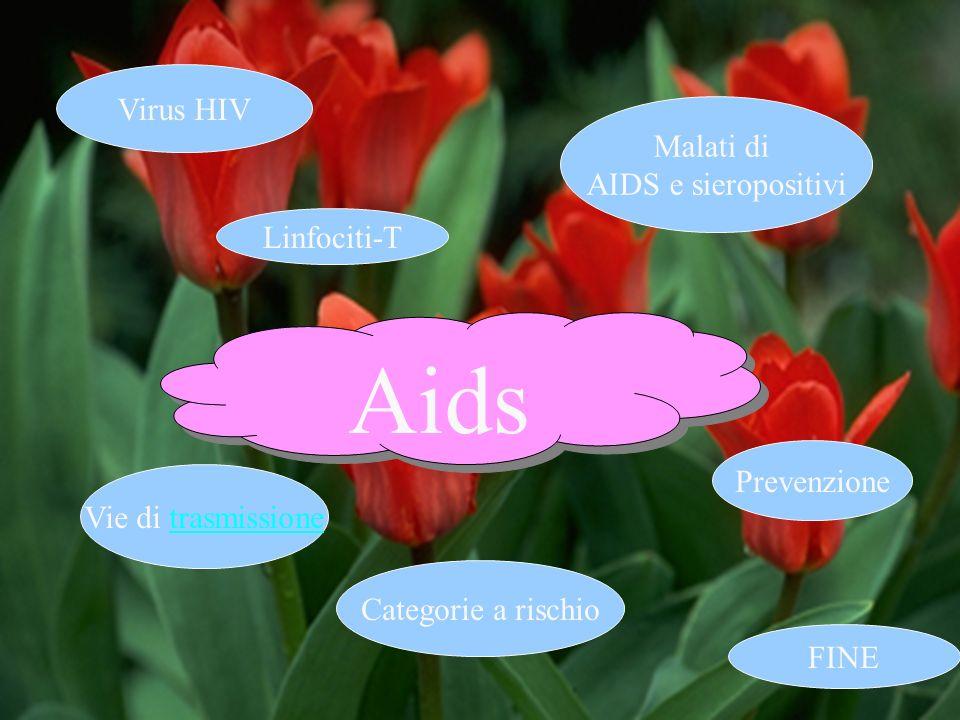 Prevenzione Vie di trasmissione Linfociti-T Categorie a rischio Virus HIV Malati di AIDS e sieropositivi Aids FINE