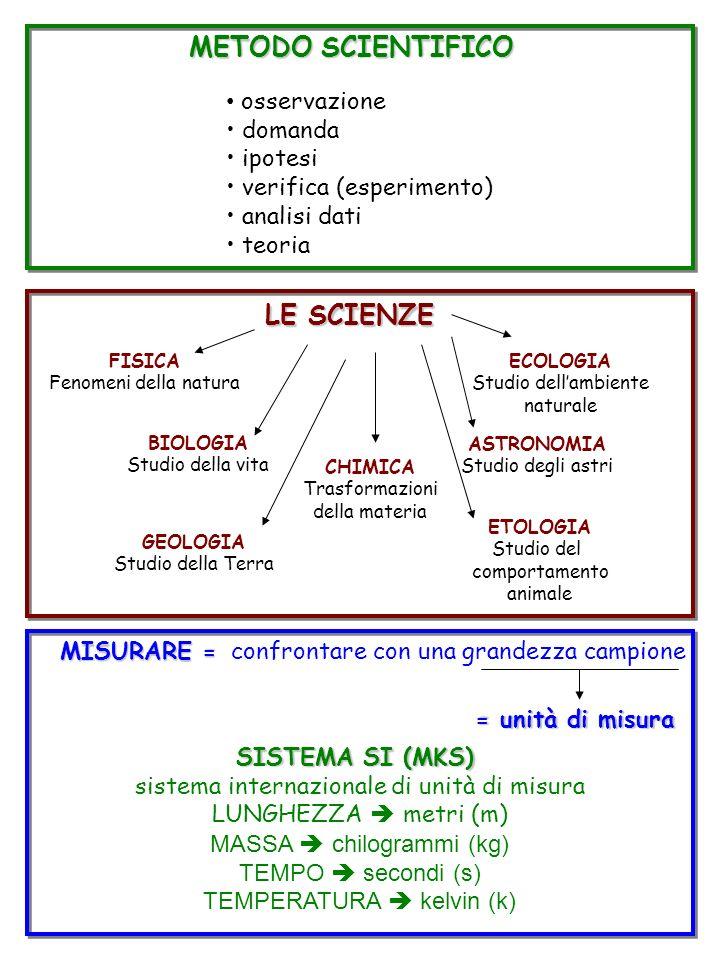 METODO SCIENTIFICO osservazione domanda ipotesi verifica (esperimento) analisi dati teoria LE SCIENZE FISICA Fenomeni della natura BIOLOGIA Studio del