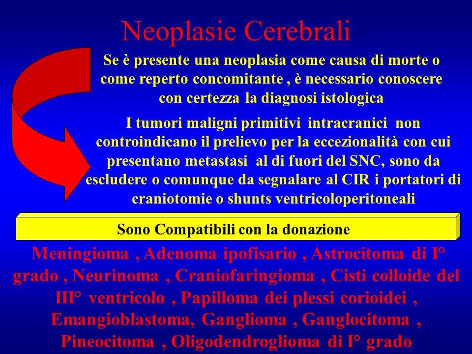 Neoplasie Cerebrali Se è presente una neoplasia come causa di morte o come reperto concomitante, è necessario conoscere con certezza la diagnosi istol