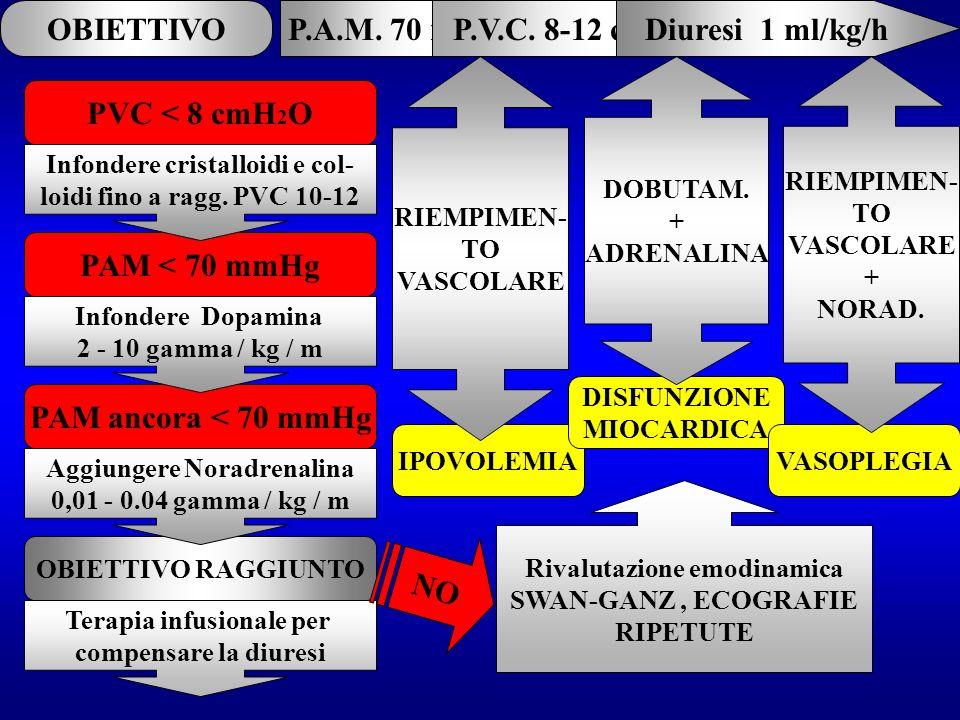 OBIETTIVOP.A.M. 70 mmHgP.V.C. 8-12 cmH 2 ODiuresi 1 ml/kg/h PVC < 8 cmH 2 O PAM < 70 mmHg OBIETTIVO RAGGIUNTO Terapia infusionale per compensare la di