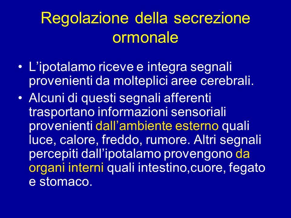 I segnali vengono trasmessi grazie a neuro- trasmettitori (dopa, noradrenalina, serotonina) Gli ormoni circolanti prodotti dagli organi bersaglio e i substrati (quali il glucosio) regolano la funzione La regolazione della secrezione ormonale è un evento dinamico.