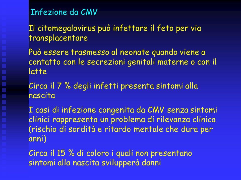Infezione da CMV Il citomegalovirus può infettare il feto per via transplacentare Può essere trasmesso al neonate quando viene a contatto con le secre