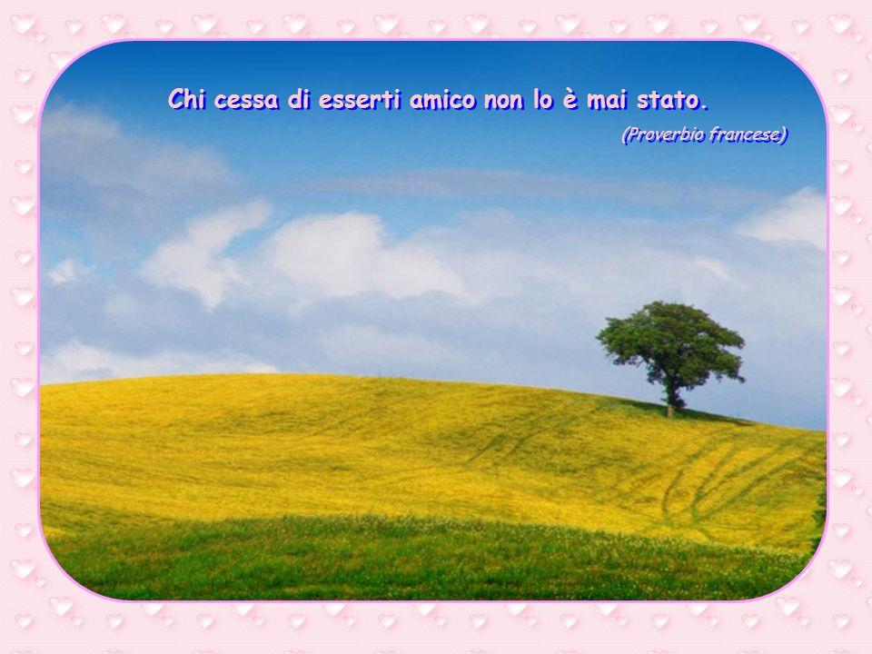 La vera amicizia è cordiale eppure discreta. Non isola, ma lascia libertà di scelta. (Madre Teresa di Calcutta) La vera amicizia è cordiale eppure dis